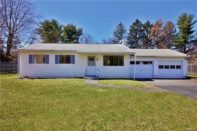 Pine Plains Single Family Home For Sale: 17 Nine Partners Drive