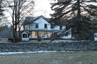 Barryville Single Family Home For Sale: 151 Haring Road