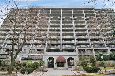 White Plains Condo/Townhouse For Sale: 15 Stewart Place #4E