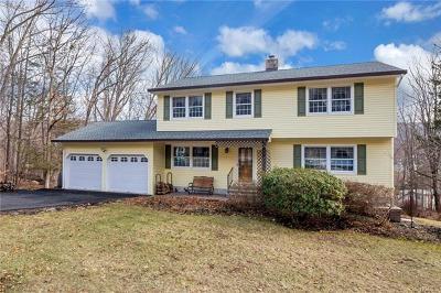 Washingtonville Single Family Home For Sale: 23 Kings Point Lane