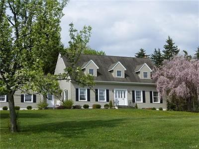 Wappingers Falls Single Family Home For Sale: 9 Bray Farm Lane