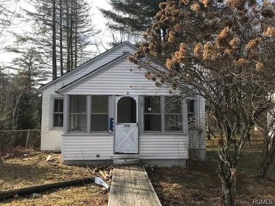 Sullivan County Single Family Home For Sale: 508 Sackett Lake Road
