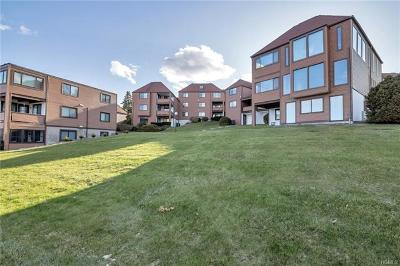 Newburgh Condo/Townhouse For Sale: 350 North Water Street #3-4