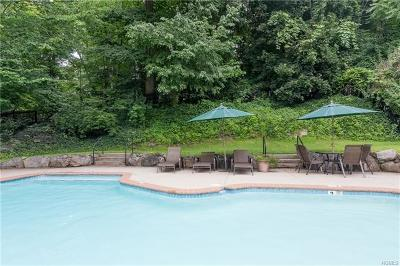 Ardsley Single Family Home For Sale: 21 Old Mill Lane