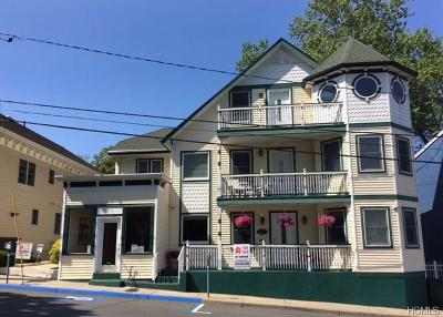 Nyack Single Family Home For Sale: 210 Main Street