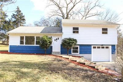 Newburgh Single Family Home For Sale: 230 Carter Avenue