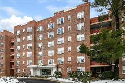 Bronx Condo/Townhouse For Sale: 1133 Midland Avenue #1D