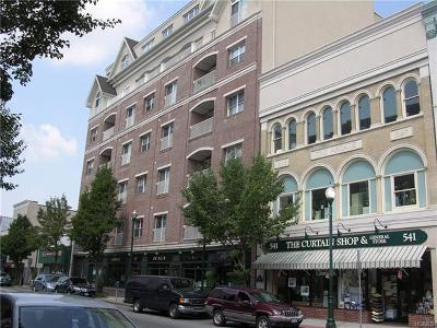 Condo/Townhouse For Sale: 543 Main Street #408