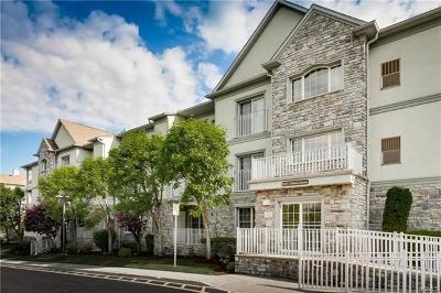 Rockland County Condo/Townhouse For Sale: 26 North De Baun Avenue #106