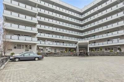 Commercial For Sale: 300 Martine Avenue #2C