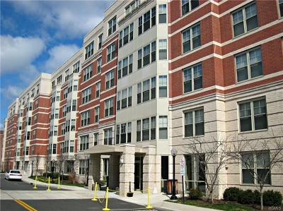 White Plains Condo/Townhouse For Sale: 300 Mamaroneck Avenue #714