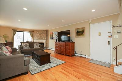 White Plains Condo/Townhouse For Sale: 89 North Broadway #214