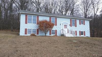 Wallkill Single Family Home For Sale: 293 Huckleberry Turnpike