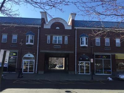 Piermont NY Condo/Townhouse For Sale: $139,000