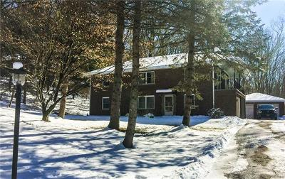 Westchester County Single Family Home For Sale: 7 Whittier Hill Drive