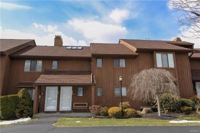 Westchester County Condo/Townhouse For Sale: 292 Panorama Drive