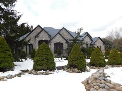 Blauvelt Single Family Home For Sale: 26 Pine Glen Drive
