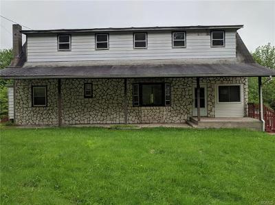 Livingston Manor Single Family Home For Sale: 158 White Roe Lake Road