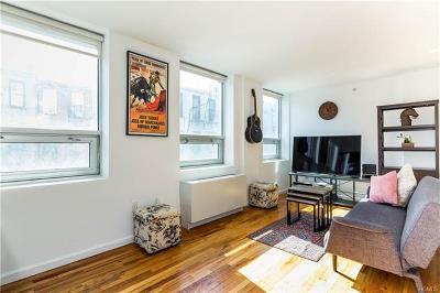 Brooklyn Condo/Townhouse For Sale: 358 Grove Street #3D