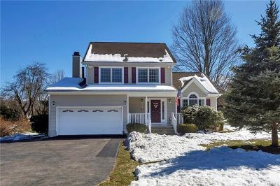 Fishkill Single Family Home For Sale: 323 Carey Road