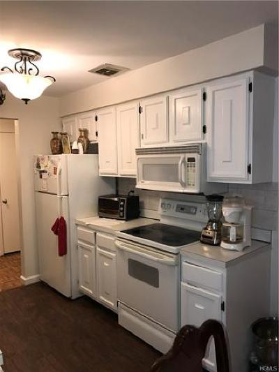 Rockland County Condo/Townhouse For Sale: 337 Richard Court