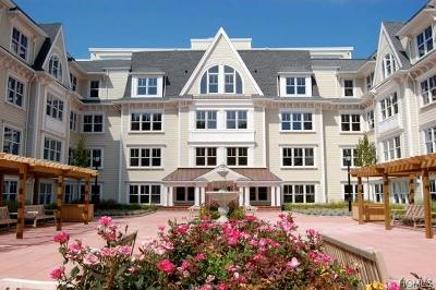 Westchester County Rental For Rent: 225 Stanley Avenue #223