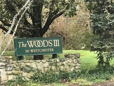 Westchester County Condo/Townhouse For Sale: 46 Bleakley Drive