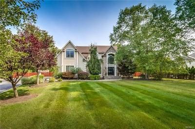 Rockland County Single Family Home For Sale: 6 Stone Meadow