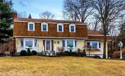 Goshen Single Family Home For Sale: 43 Old Minisink Trail
