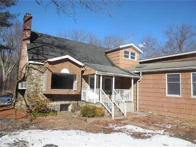 Westchester County Single Family Home For Sale: 1196 Route 35
