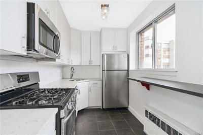 Bronx Condo/Townhouse For Sale: 4455 Douglas Avenue #11A