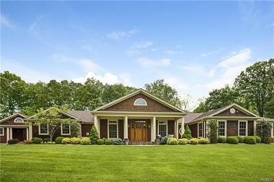 Westchester County Single Family Home For Sale: 1 The Knoll