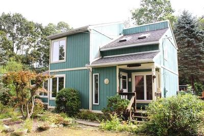Westchester County Single Family Home For Sale: 63 Meadow Sweet Road