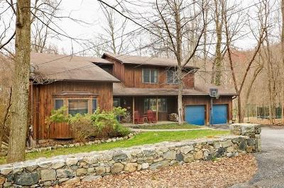 Putnam County Single Family Home For Sale: 90 East Mountain Road