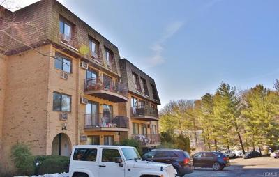 Westchester County Condo/Townhouse For Sale: 500 Central Park Avenue #321