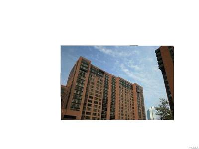 Westchester County Rental For Rent: 4 Martine Avenue #611
