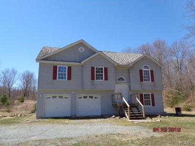 Ellenville Single Family Home For Sale: 1123 Briggs Highway