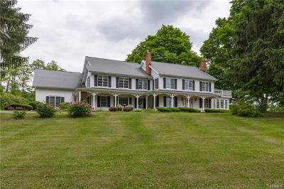 Pleasant Valley Single Family Home For Sale: 1658 Salt Point Turnpike