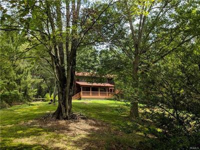 Wurtsboro Single Family Home For Sale: 45 Haven Road