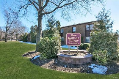 Nanuet Condo/Townhouse Sold: 62 New Holland Village