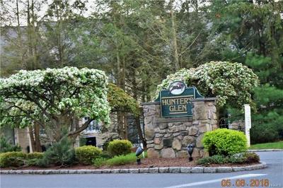 Carmel Condo/Townhouse For Sale: 1107 Nutmeg Drive #75