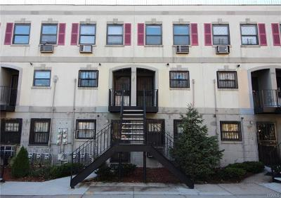 Bronx NY Condo/Townhouse For Sale: $249,000