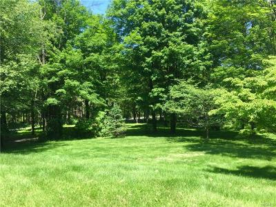 Dutchess County Single Family Home For Sale: 414 North Quaker Hill Road