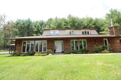 Narrowsburg Single Family Home For Sale: 863 Crystal Lake Road