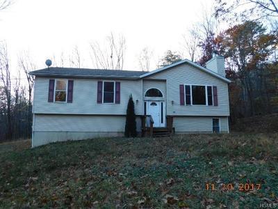 Pine Bush Single Family Home For Sale: 41 Lenni Lenape Avenue