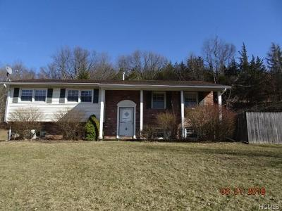 Goshen Single Family Home For Sale: 2160 State Route 17a
