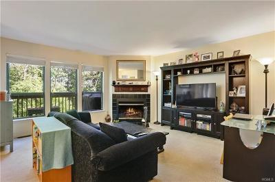 Ossining Condo/Townhouse For Sale: 302 Chase Court