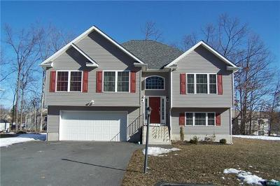 Maybrook Single Family Home For Sale: 102 Logan's Way