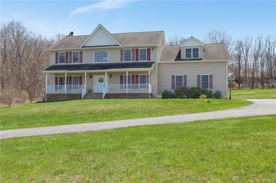 Middletown Single Family Home For Sale: 357 Mt Orange Road
