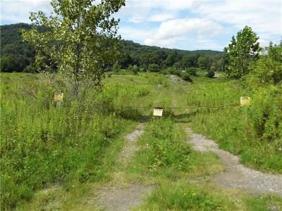 Wassaic Residential Lots & Land For Sale: 55 South Amenia Road